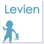 geboortekaart silhouet met de naam levien en zijn broertje. Grote broer kondigt de geboorte van zijn kleine broertje aan.