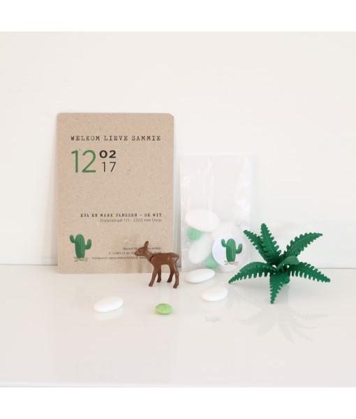 geboortekaartje cactus