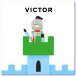 geboortekaartje ridder
