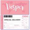 geboortekaartje ticket is een apart geboortekaartje met roze en een wereldkaart en op de achterzijde in de vorm van een vliegticket