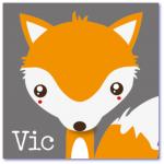 geboortekaartje vos vic