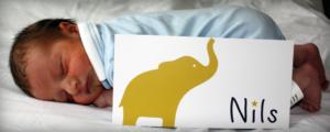 geboortekaartjes met doopsuikers