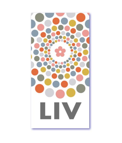 geboortekaartjes pastel is een origineel design geboortekaartje met de naam liv