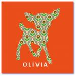 hippe geboortekaartjes met de naam olivia. Geboortekaartje met hertje, het hertje is voorzien van een strak bloemetjes patroon