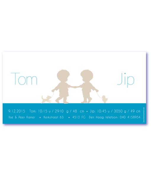 kaartje tweeling jongens